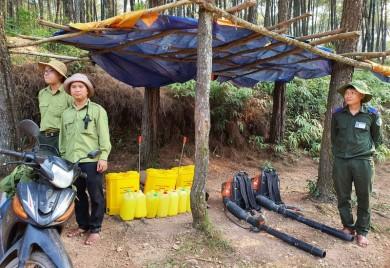 Liên tiếp xảy ra nhiều vụ cháy rừng Thông cảnh quan trên địa bàn thành phố Huế