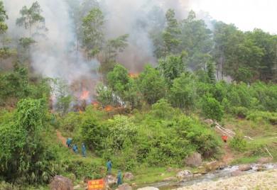 Tổ chức diễn tập phòng cháy, chữa cháy rừng và tìm kiếm cứu nạn tại huyện A Lưới